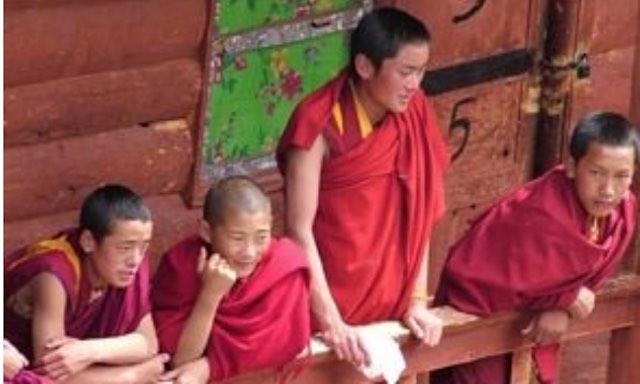 ghepelling tenerife onlus - los jovenes monjes